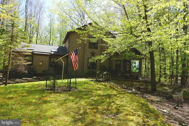 1162 N Ranger Trail N, POCONO LAKE, PA 18347 (#PAMR107456) :: The Mike Coleman Team