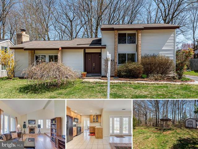 512 Sugarland Run Drive, STERLING, VA 20164 (#VALO433696) :: The MD Home Team