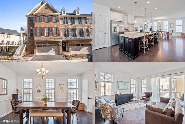 25014 Cambridge Hill Terrace, CHANTILLY, VA 20152 (#VALO433722) :: City Smart Living