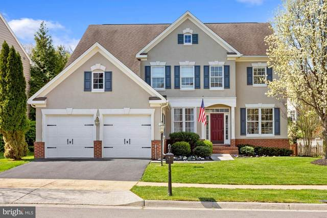 43617 Habitat Circle, LEESBURG, VA 20176 (#VALO433748) :: Shawn Little Team of Garceau Realty