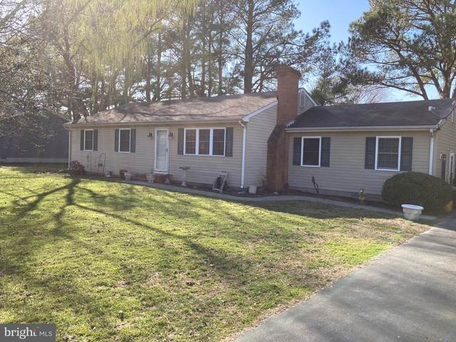 3856 Rumsey Drive, TRAPPE, MD 21673 (MLS #MDTA140684) :: Maryland Shore Living | Benson & Mangold Real Estate