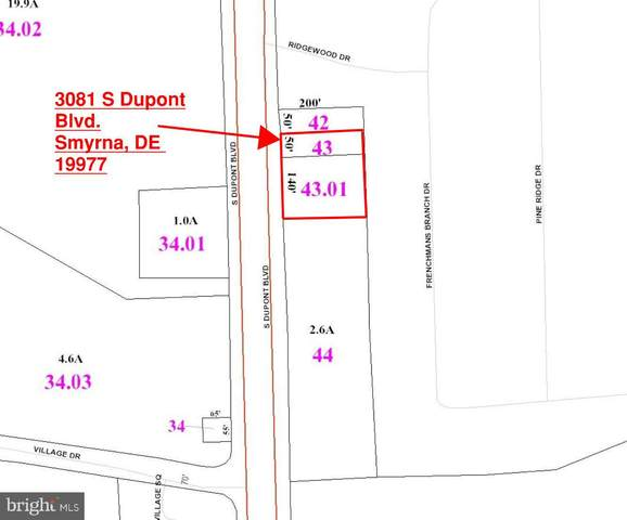 3081 S Dupont Boulevard, SMYRNA, DE 19977 (#DEKT247372) :: Atlantic Shores Sotheby's International Realty