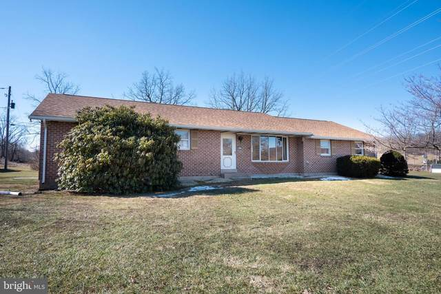 4536 S Sunset Drive, COOPERSBURG, PA 18036 (#PALH116274) :: LoCoMusings