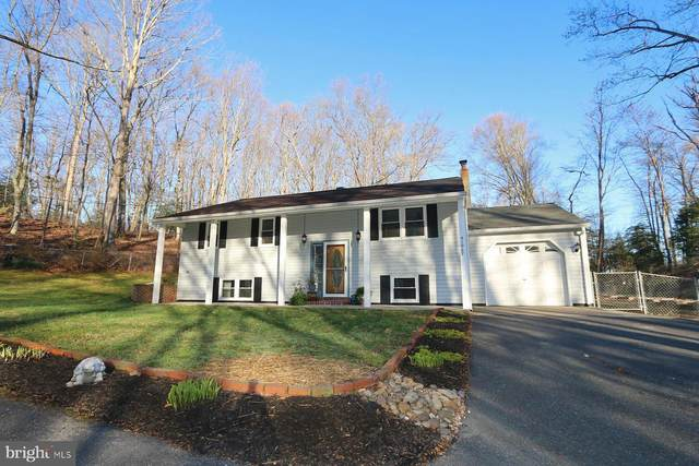 41067 Medleys Neck Road, LEONARDTOWN, MD 20650 (#MDSM175206) :: The MD Home Team