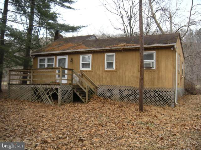 69 River Drive, CAPON BRIDGE, WV 26711 (#WVHS115464) :: SURE Sales Group