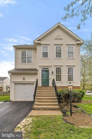43490 Mink Meadows Street, CHANTILLY, VA 20152 (#VALO433936) :: Pearson Smith Realty