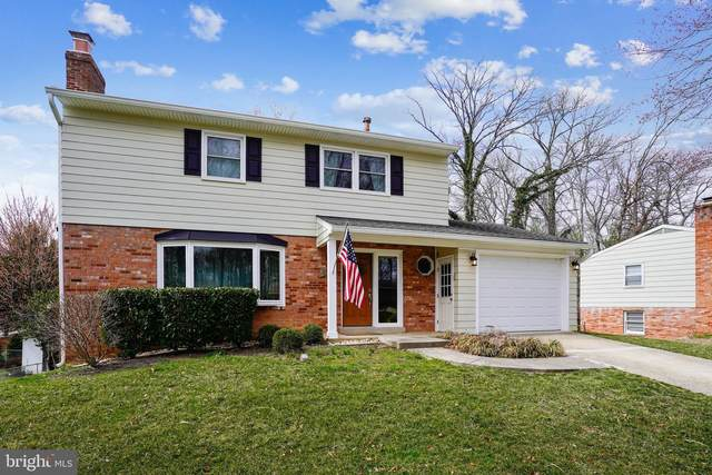 6610 Greenview Lane, SPRINGFIELD, VA 22152 (#VAFX1188688) :: SURE Sales Group