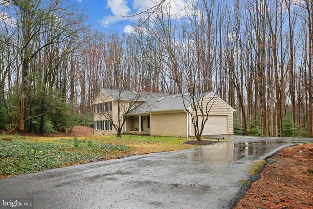 11010 Warwickshire Drive, GREAT FALLS, VA 22066 (#VAFX1188704) :: SURE Sales Group