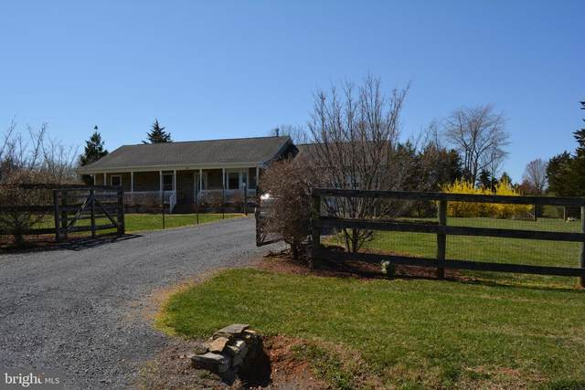 180 Youngs Drive, FRONT ROYAL, VA 22630 (#VAWR143096) :: Century 21 Dale Realty Co