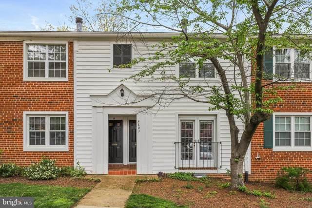 4603-B 28TH Road S, ARLINGTON, VA 22206 (#VAAR178562) :: Dart Homes