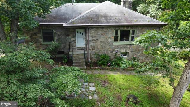 39 River Road, BLUEMONT, VA 20135 (#VACL112222) :: Pearson Smith Realty
