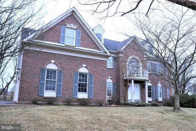 173 Buckwalter Road, ROYERSFORD, PA 19468 (#PAMC687022) :: Linda Dale Real Estate Experts
