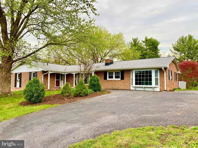 8239 Lord Fairfax Highway, BERRYVILLE, VA 22611 (#VACL112228) :: AJ Team Realty
