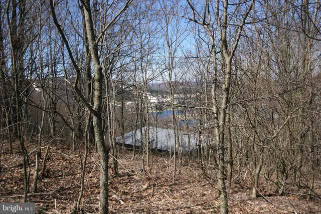 LOT 6A Fairgate Road, MC HENRY, MD 21541 (#MDGA134772) :: ExecuHome Realty