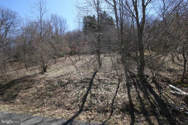 LOT 8B Fairgate Road, MC HENRY, MD 21541 (#MDGA134776) :: ExecuHome Realty