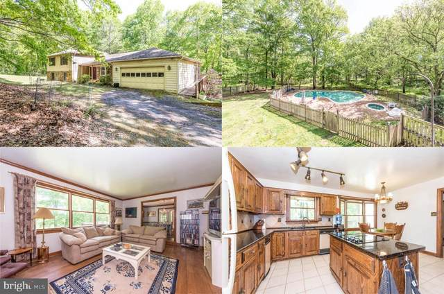 37744 Hughesville Road, PURCELLVILLE, VA 20132 (#VALO434164) :: AJ Team Realty