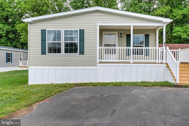 28 Meadowview Drive, NEW BLOOMFIELD, PA 17068 (#PAPY103240) :: The Heather Neidlinger Team With Berkshire Hathaway HomeServices Homesale Realty