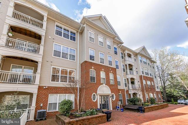 5108 Donovan Drive #103, ALEXANDRIA, VA 22304 (#VAAX257776) :: Bob Lucido Team of Keller Williams Lucido Agency
