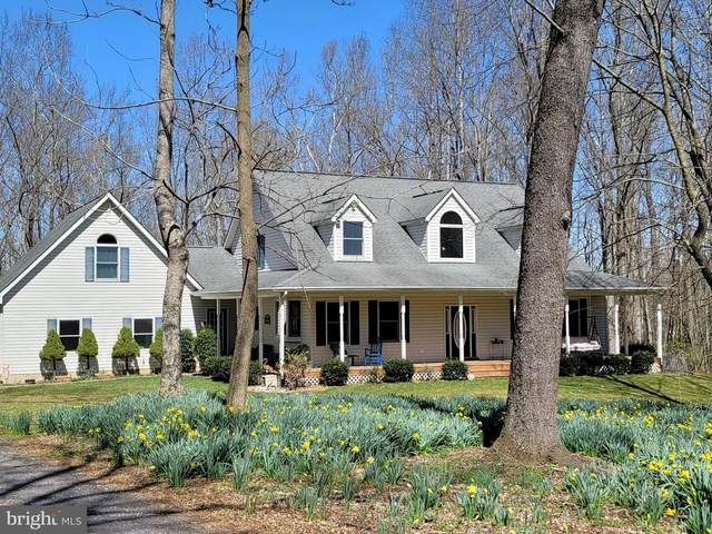 6675 Campground Lane, CASTLETON, VA 22716 (#VACU144070) :: New Home Team of Maryland