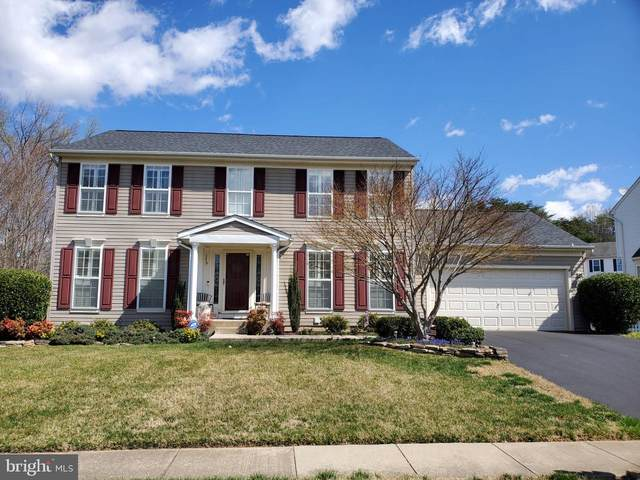175 Basalt Drive, FREDERICKSBURG, VA 22406 (#VAST230566) :: Tom & Cindy and Associates