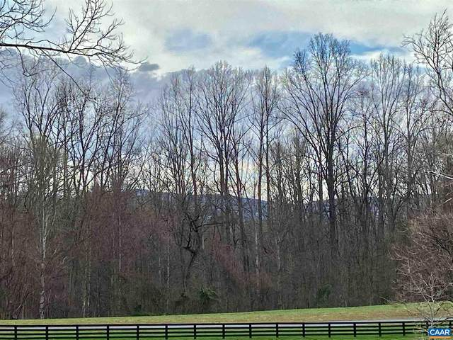 Lot 53 Hemlock Creek Court #53, EARLYSVILLE, VA 22936 (#615355) :: The Sky Group