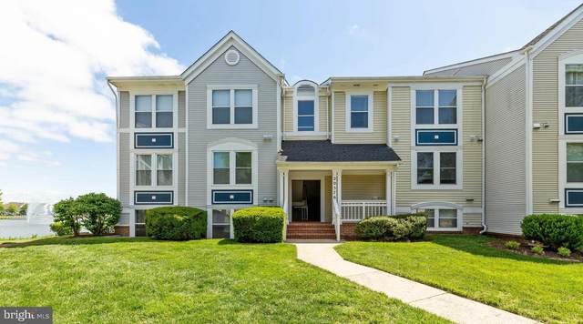 20576 Snowshoe Square #101, ASHBURN, VA 20147 (#VALO434298) :: Colgan Real Estate