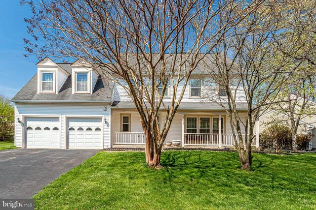 21739 Pinewood Court, STERLING, VA 20164 (#VALO434308) :: Shawn Little Team of Garceau Realty