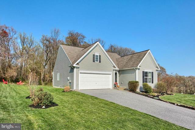 105 Lark Drive, YORK HAVEN, PA 17370 (#PAYK155396) :: The Jim Powers Team