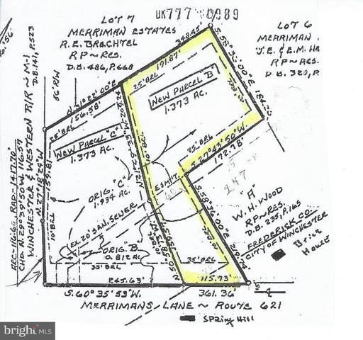 745 Merrimans Lane, WINCHESTER, VA 22601 (#VAFV163036) :: ExecuHome Realty