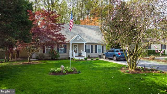 317 William Way, STEVENSVILLE, MD 21666 (#MDQA147226) :: The Riffle Group of Keller Williams Select Realtors