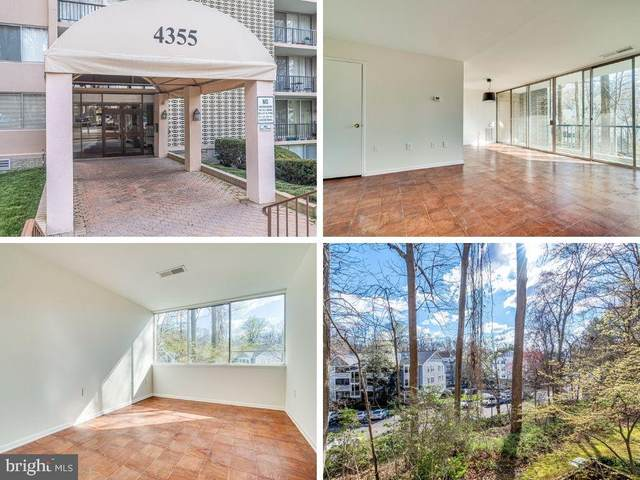 4355 Ivymount Court #8, ANNANDALE, VA 22003 (#VAFX1189776) :: Debbie Dogrul Associates - Long and Foster Real Estate