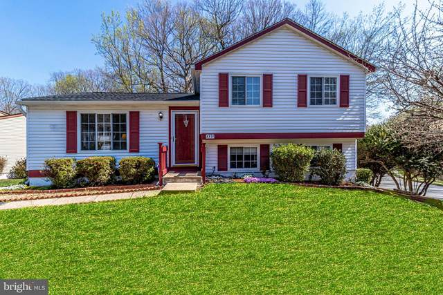 8319 White Star Court, SPRINGFIELD, VA 22153 (#VAFX1189936) :: Berkshire Hathaway HomeServices McNelis Group Properties