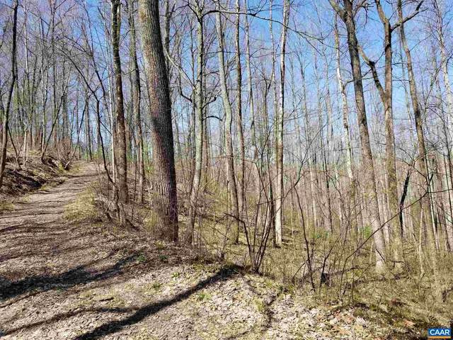 High Road, STANARDSVILLE, VA 22973 (#615449) :: ExecuHome Realty