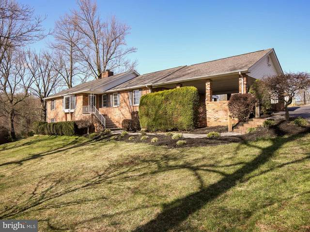 167 Sterrett Lane, CLEAR BROOK, VA 22624 (#VAFV163120) :: Realty One Group Performance