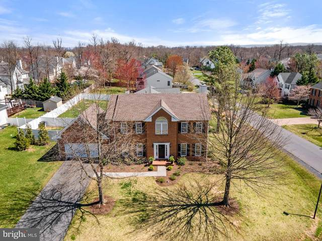 200 Cavalry Drive, WINCHESTER, VA 22602 (#VAFV163122) :: Realty One Group Performance