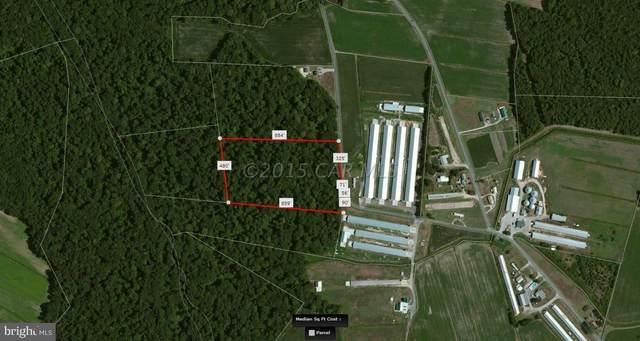 0 Davis Road, WHALEYVILLE, MD 21872 (#MDWO121286) :: Shamrock Realty Group, Inc