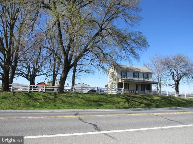 6281 Burnite Mill Road, FELTON, DE 19943 (#DEKT247596) :: Barrows and Associates