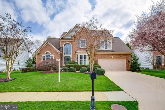 6503 Wynema Court, ALEXANDRIA, VA 22315 (#VAFX1190026) :: Colgan Real Estate