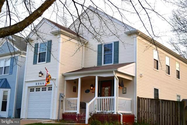 8066 Pendragon Way, PASADENA, MD 21122 (MLS #MDAA463526) :: Maryland Shore Living | Benson & Mangold Real Estate