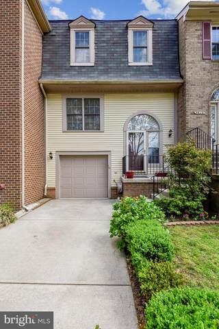 5921 Norham Drive, ALEXANDRIA, VA 22315 (#VAFX1190138) :: Debbie Dogrul Associates - Long and Foster Real Estate