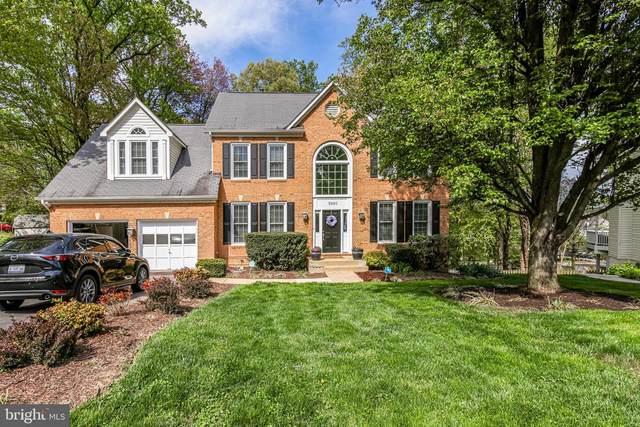 5940 Clames Drive, ALEXANDRIA, VA 22310 (MLS #VAFX1190224) :: Maryland Shore Living | Benson & Mangold Real Estate