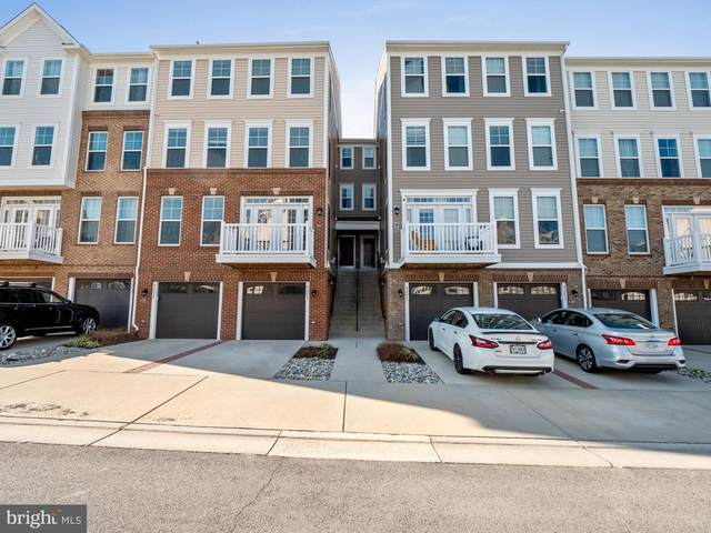 42275 Canary Grass Square, ALDIE, VA 20105 (#VALO434538) :: The Redux Group