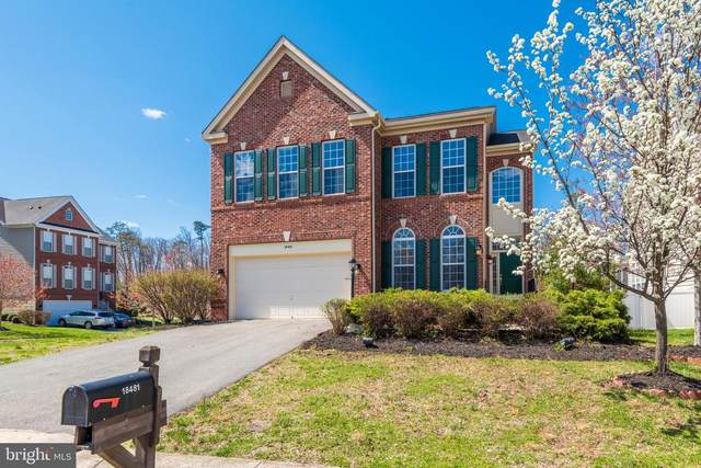 18481 Sweetberry Court, LEESBURG, VA 20176 (#VALO434542) :: SURE Sales Group