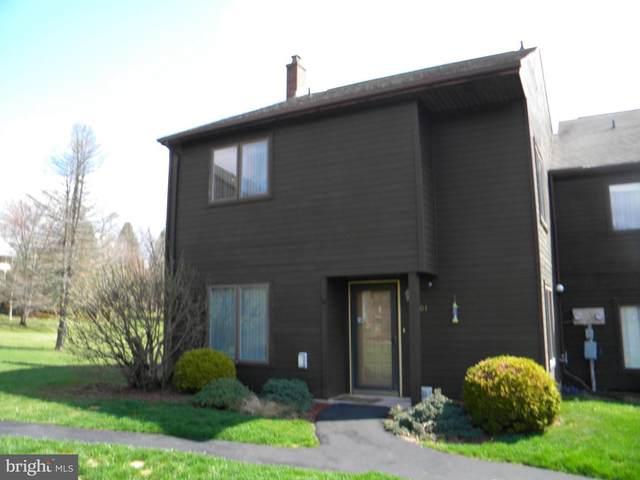 301 Village Road, ORWIGSBURG, PA 17961 (#PASK134702) :: Jason Freeby Group at Keller Williams Real Estate