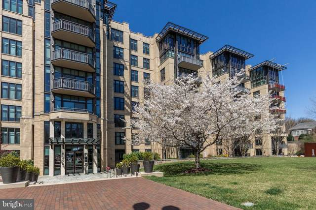 4301 Military Road NW #206, WASHINGTON, DC 20015 (#DCDC514894) :: Jacobs & Co. Real Estate