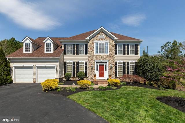 7 Cattail Court, STAFFORD, VA 22554 (#VAST230742) :: Realty One Group Performance