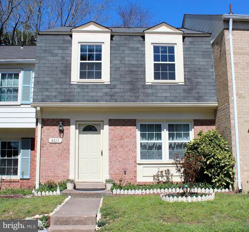 6611 Elk Park Court, ALEXANDRIA, VA 22310 (#VAFX1190556) :: Dart Homes
