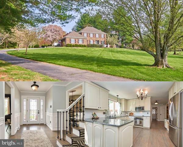 23470 Dover Road, MIDDLEBURG, VA 20117 (#VALO434700) :: Gail Nyman Group