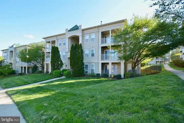 1031 Gardenview Loop #303, WOODBRIDGE, VA 22191 (#VAPW518720) :: Pearson Smith Realty