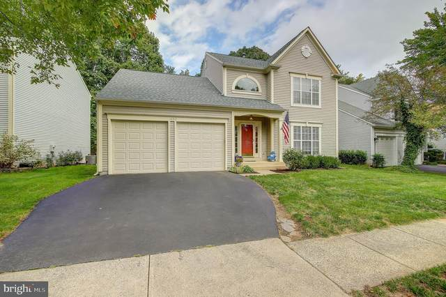 46512 Hollymead Place, STERLING, VA 20165 (#VALO434726) :: Colgan Real Estate